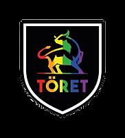 logo toret calcio.png