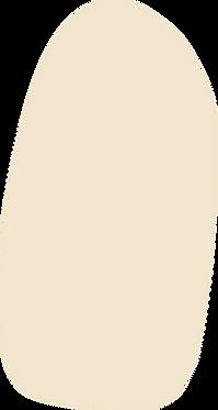 13_Organic_Shape_Beige.png