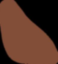 9_Organic_Shape_Brown.png
