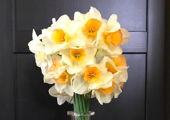 NarcissusYazz_edited.jpg