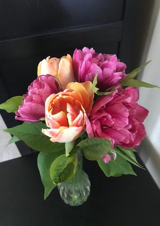 Tulips_MargaritaAndFoxyFoxtrot.JPG