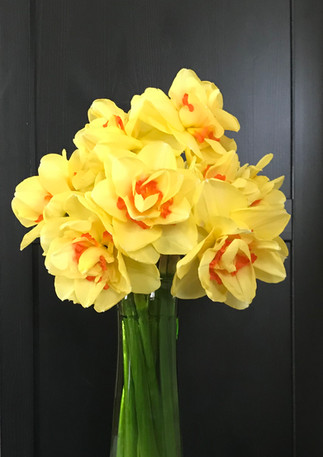 NarcissusTahiti.jpg