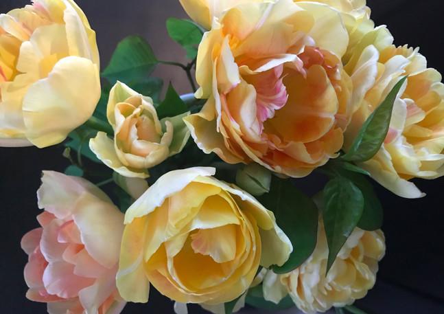 Tulips_CharmingBeauty_edited.jpg
