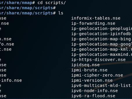 NMAP איך משתמשים בסקריפטים של