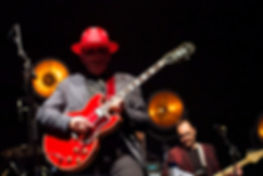 Elvis Costello4- Port Chester, NY March