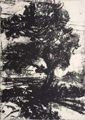 Monotype on paper, 35 x 25 cm, 2016