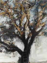 """""""Noyer, soleil couchant, échelle"""" 130 x 97 cm"""