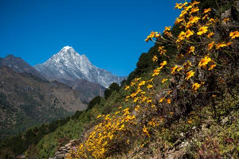 Nepal_Cass-24.jpg