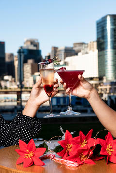 Property NSW Darling Harbour