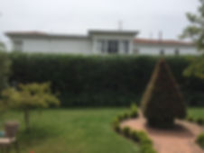hedge trimming, pruning, garden maintenance, gardeners, Sandy Bay