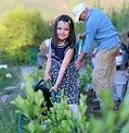Gardening_Kalina.JPG