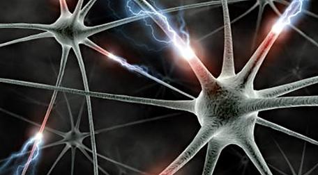 illustration neurones.png