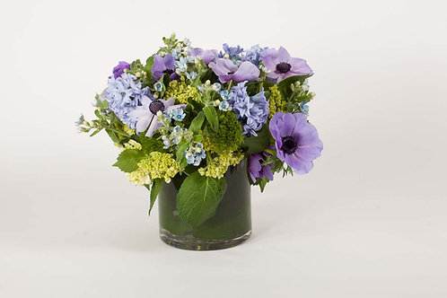 Blue Tweedia, Anemones & Hyacinth
