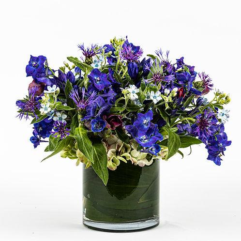 Blue Delphinium and Tweedia