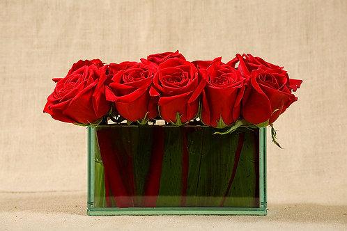 American Beauty Roses