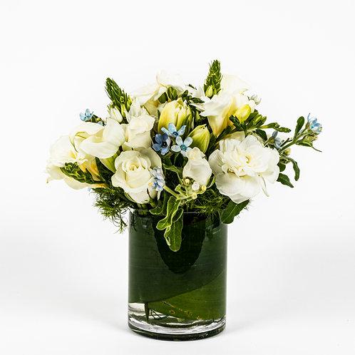 White Roses, Freesia and Tweedia