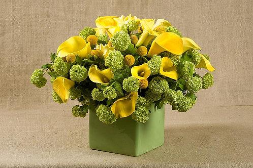 Yellow Calla Lilies, Craspedia & Hydrangea