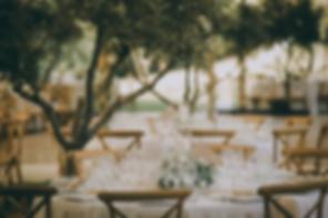 Tables dans l'oliveraie