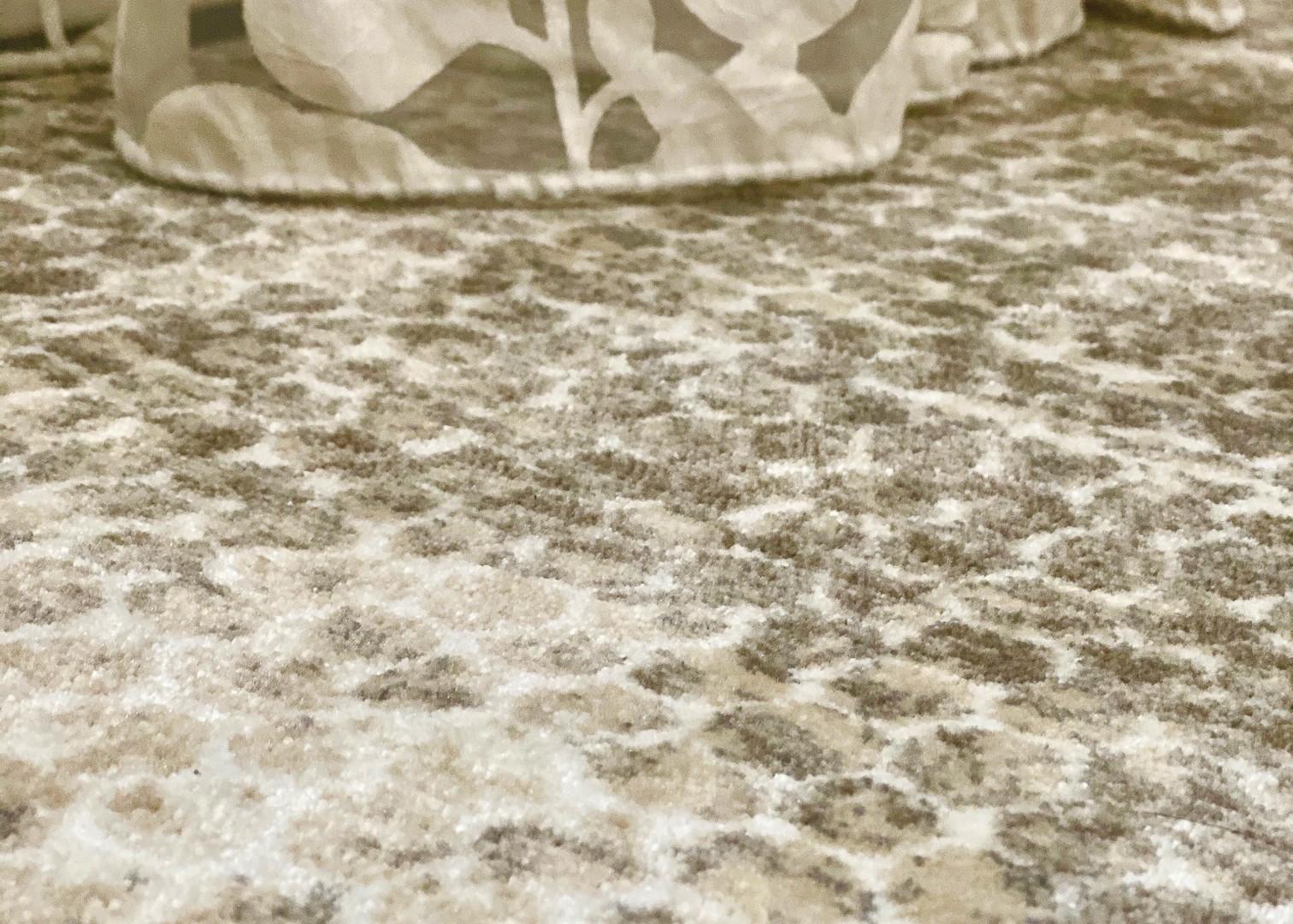 Modern Guest Bedroom Carpet