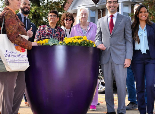 Vibrant, New Planters On Woodhaven Boulevard!
