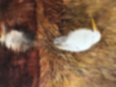 Rosie Heron.jpg