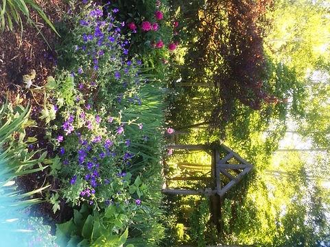 DeFries Gardens 3.JPG