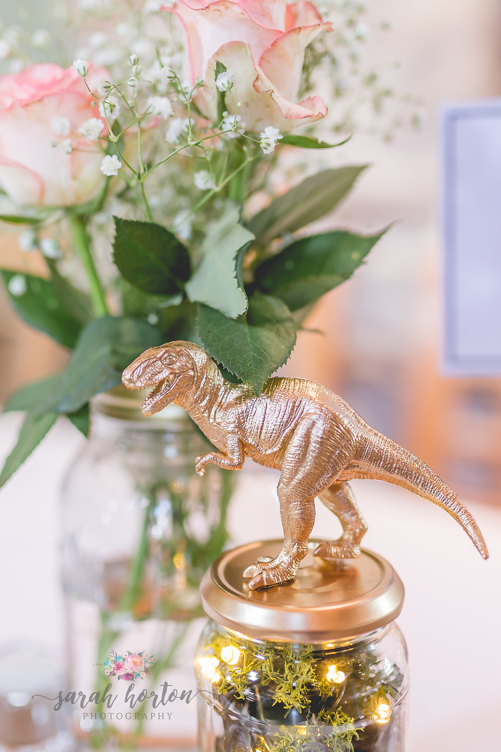 the ashes cheshire wedding photographer dinosaur