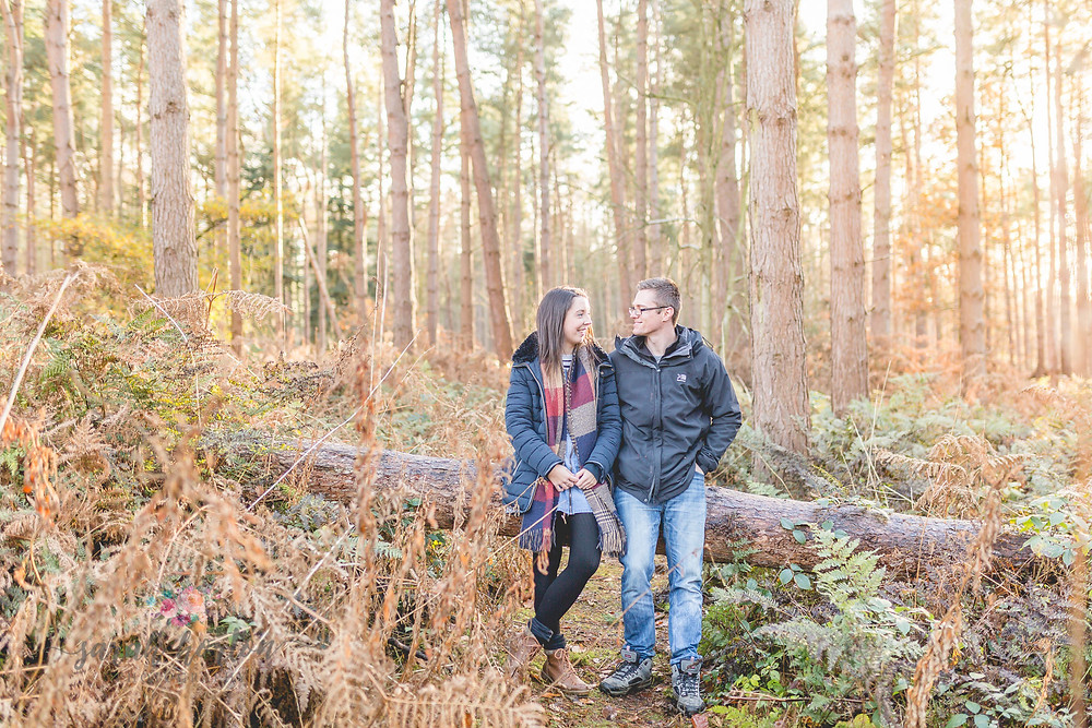 engagement delamere forest by cheshire wedding photographer