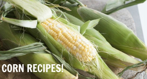 All About Corn: A Roundup of Summer Corn Recipes