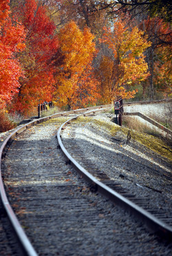 Vassar railroad fall 5.jpg