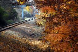 Vassar railroad fall.jpg
