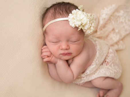 Addison's Newborn Session