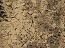 It's the time of year to start thinking about your soil.