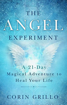 The Angel Experiment by Corin Grillo