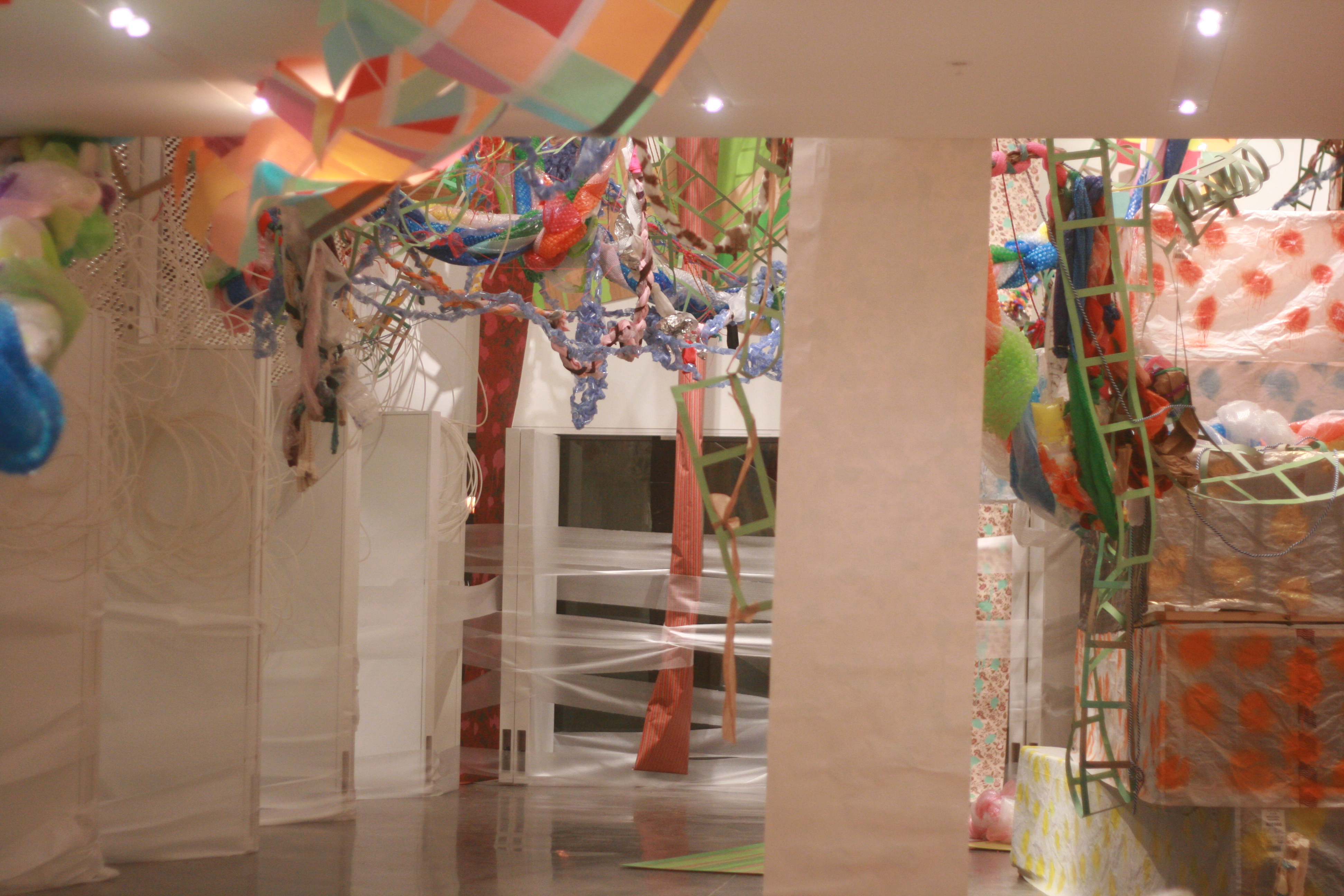 Not This and Not That: Installation in The Turner Gallery, Alfred,NY