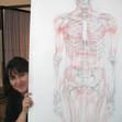 Anatomiestudie Knochen und Muskeln