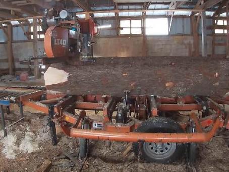 Sawmills and Skills