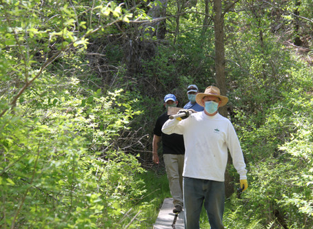 Repairs accomplished at Middle Goosefare Trail (Saturday, May 30, 2020)