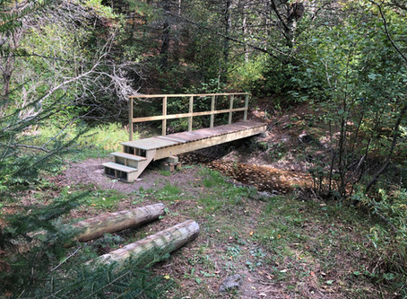New bridge at Horton Woods