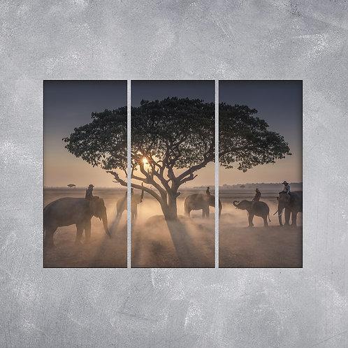 Quadro Manada de Elefantes