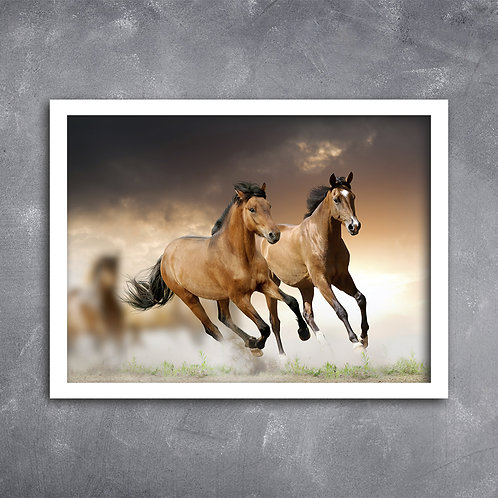 Quadro Cavalos Mustangue