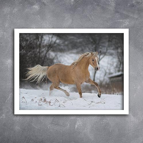 Quadro Cavalo na Neve