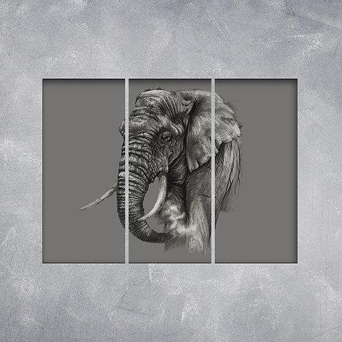 Quadro Elefante Caricato