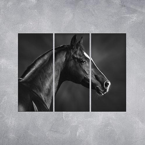 Quadro Cavalo Preto