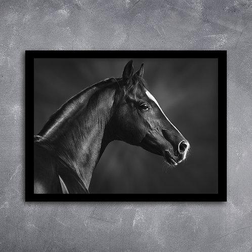 Quadro Retrato Cavalo em Pb