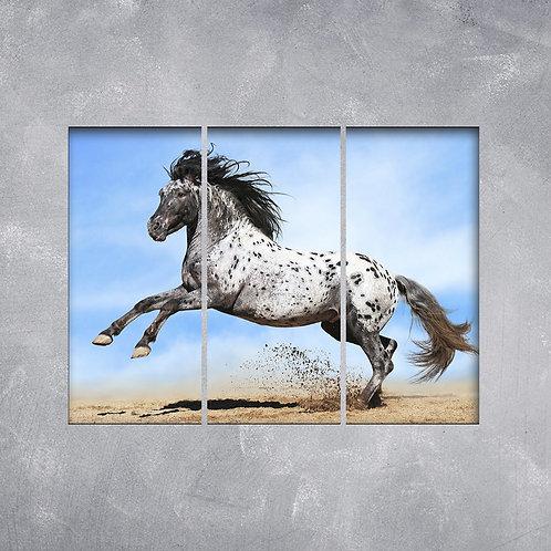 Quadro Cavalo Malhado