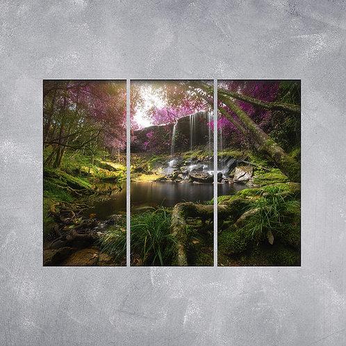 Quadro Floresta Escondida