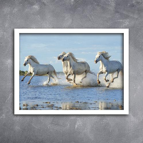 Quadro Cavalos Indíginas no Mar