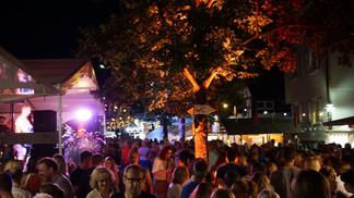 14. Siegelsbacher Dorffest