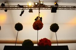 Floristik - Reunion Events
